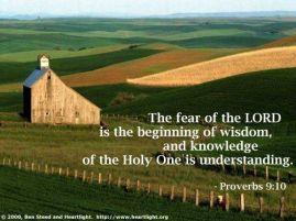 Fear Wisdom