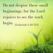 do-not-despise
